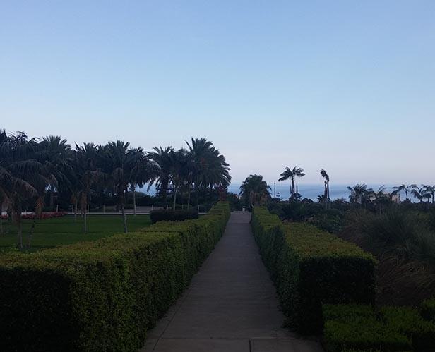 frammenti giardino 1