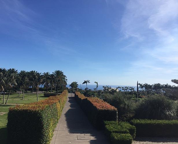 antropocene giardino 1