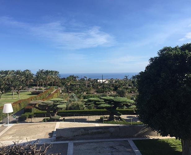 antropocene giardino alto 2